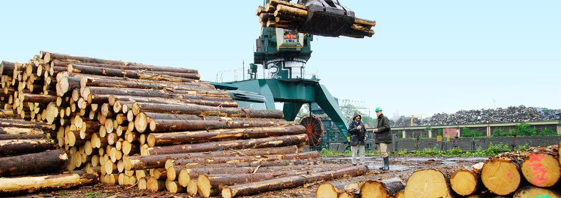 Holz Raiffeisen Waren Zentrale Rhein Main Eg